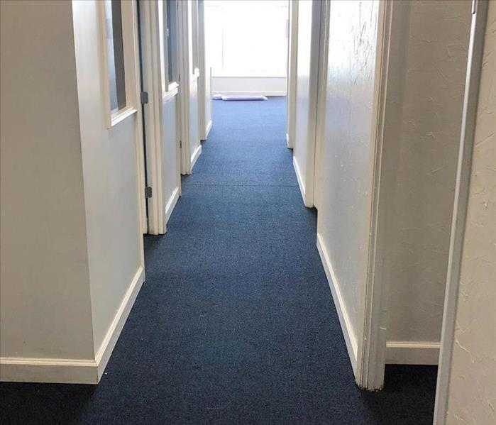 Hallway back to new after repairs