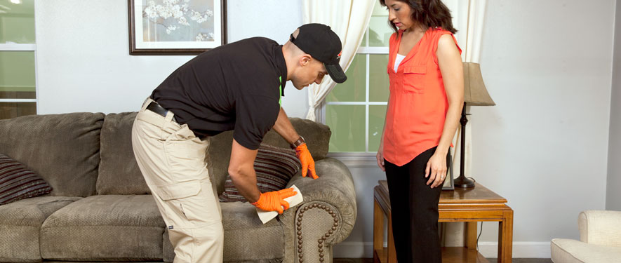 Baltimore, MD carpet upholstery cleaning