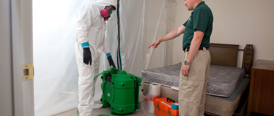 Baltimore, MD mold removal process